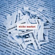 Build A Niche Site
