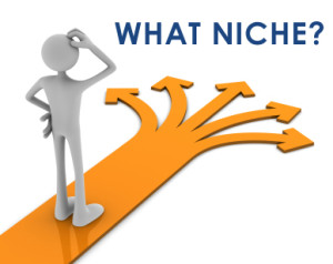 Create A Niche Website