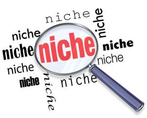 Create Niche Website