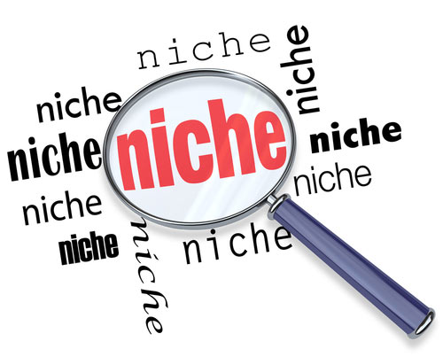 Create Niche Website